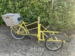 Pashley Ct2 Carrier Tricycle Cargo Bike 3 Speed